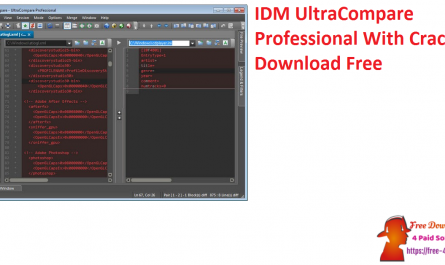 IDM UltraCompare Professional With Crack Download Free
